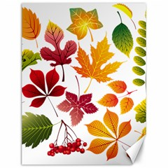 Beautiful Autumn Leaves Vector Canvas 12  X 16