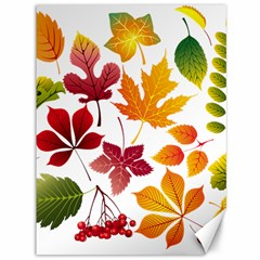 Beautiful Autumn Leaves Vector Canvas 36  X 48