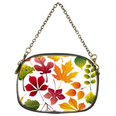 Beautiful Autumn Leaves Vector Chain Purses (one Side)