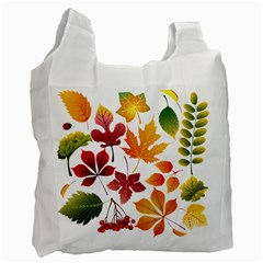 Beautiful Autumn Leaves Vector Recycle Bag (one Side)