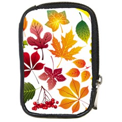 Beautiful Autumn Leaves Vector Compact Camera Cases