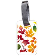 Beautiful Autumn Leaves Vector Luggage Tags (two Sides)