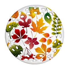 Beautiful Autumn Leaves Vector Round Filigree Ornament (two Sides)
