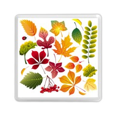 Beautiful Autumn Leaves Vector Memory Card Reader (square)
