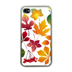 Beautiful Autumn Leaves Vector Apple Iphone 4 Case (clear)