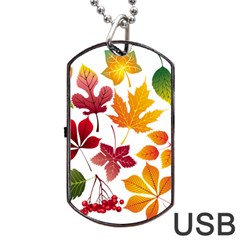 Beautiful Autumn Leaves Vector Dog Tag Usb Flash (one Side)