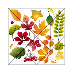 Beautiful Autumn Leaves Vector Acrylic Tangram Puzzle (6  X 6 )