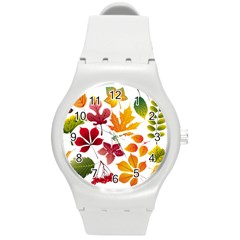Beautiful Autumn Leaves Vector Round Plastic Sport Watch (m)