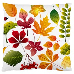 Beautiful Autumn Leaves Vector Large Cushion Case (two Sides) by Nexatart