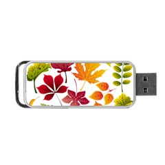 Beautiful Autumn Leaves Vector Portable Usb Flash (one Side)