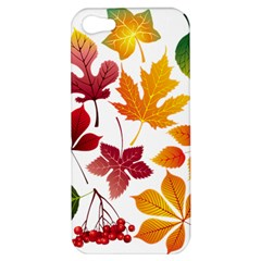 Beautiful Autumn Leaves Vector Apple Iphone 5 Hardshell Case