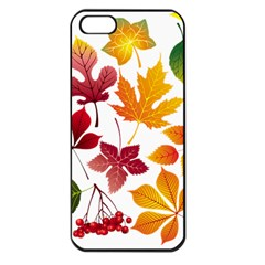 Beautiful Autumn Leaves Vector Apple Iphone 5 Seamless Case (black)