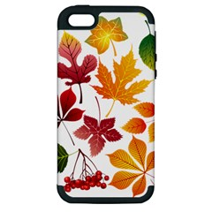 Beautiful Autumn Leaves Vector Apple Iphone 5 Hardshell Case (pc+silicone)