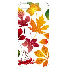 Beautiful Autumn Leaves Vector Apple Iphone 5 Hardshell Case With Stand
