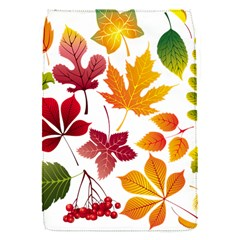 Beautiful Autumn Leaves Vector Flap Covers (s)