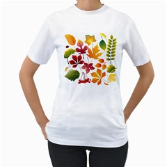 Beautiful Autumn Leaves Vector Women s T Shirt (white)