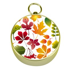 Beautiful Autumn Leaves Vector Gold Compasses