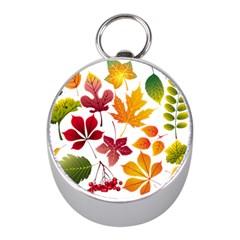 Beautiful Autumn Leaves Vector Mini Silver Compasses