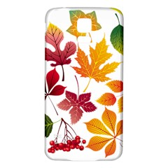 Beautiful Autumn Leaves Vector Samsung Galaxy S5 Back Case (white)