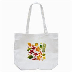 Beautiful Autumn Leaves Vector Tote Bag (white)