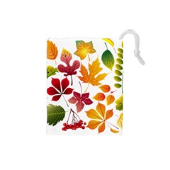 Beautiful Autumn Leaves Vector Drawstring Pouches (small)