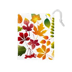 Beautiful Autumn Leaves Vector Drawstring Pouches (medium)