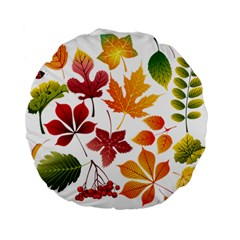 Beautiful Autumn Leaves Vector Standard 15  Premium Flano Round Cushions