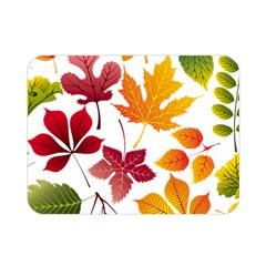 Beautiful Autumn Leaves Vector Double Sided Flano Blanket (mini)