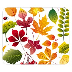 Beautiful Autumn Leaves Vector Double Sided Flano Blanket (small)