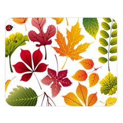 Beautiful Autumn Leaves Vector Double Sided Flano Blanket (large)