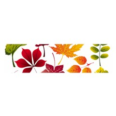 Beautiful Autumn Leaves Vector Satin Scarf (oblong)