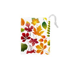 Beautiful Autumn Leaves Vector Drawstring Pouches (xs)