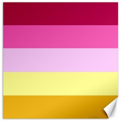 Red Orange Yellow Pink Sunny Color Combo Striped Pattern Stripes Canvas 20  X 20