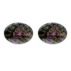 Old Tree 6 Cufflinks (oval)