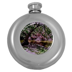 Old Tree 6 Round Hip Flask (5 Oz)