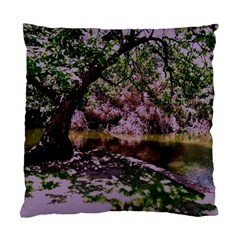 Old Tree 6 Standard Cushion Case (one Side)