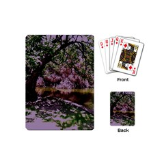 Old Tree 6 Playing Cards (mini)
