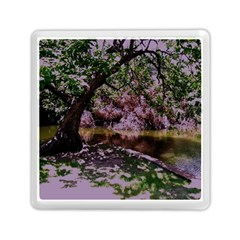 Old Tree 6 Memory Card Reader (square)