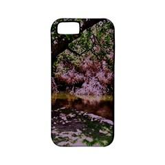 Old Tree 6 Apple Iphone 5 Classic Hardshell Case (pc+silicone)