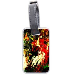 Sunset In A Desert Of Mexico 1 Luggage Tags (two Sides)