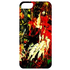 Sunset In A Desert Of Mexico 1 Apple Iphone 5 Classic Hardshell Case