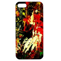 Sunset In A Desert Of Mexico 1 Apple Iphone 5 Hardshell Case With Stand