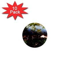 Highland Park 10 1  Mini Magnet (10 Pack)
