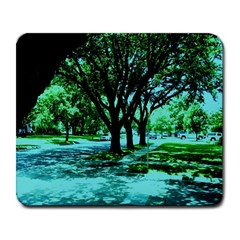 Hot Day In Dallas 5 Large Mousepads