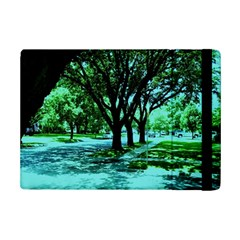 Hot Day In Dallas 5 Ipad Mini 2 Flip Cases by bestdesignintheworld