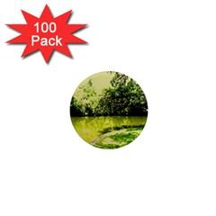Lake Park 9 1  Mini Magnets (100 Pack)