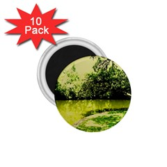 Lake Park 9 1 75  Magnets (10 Pack)
