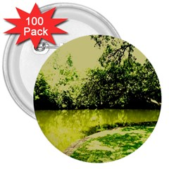 Lake Park 9 3  Buttons (100 Pack)