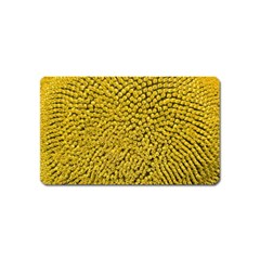 Sunflower Head (helianthus Annuus) Hungary Felsotold Magnet (name Card)