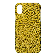 Sunflower Head (helianthus Annuus) Hungary Felsotold Apple Iphone X Hardshell Case